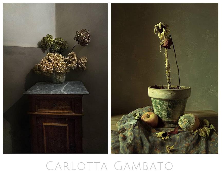 Carlotta-Gambato-Fotografia-Bodegones