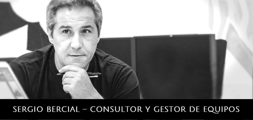 Sergio Bercial - Consultor y Gestor de Equipos