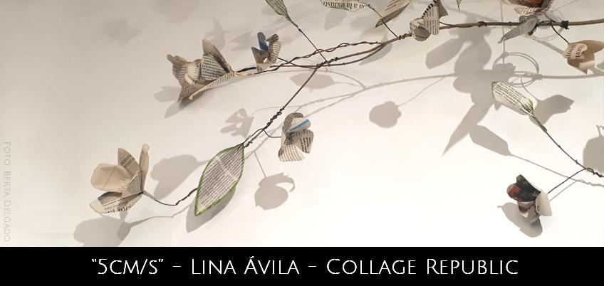 Lina Avila - Collage Republic - 5 cms - Exposicion Individual