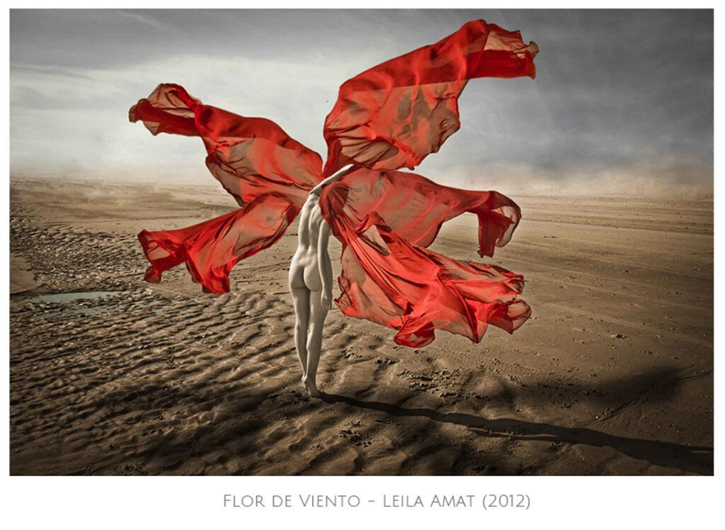 Leila Amat. Artista visual. Proyecto 8x8 (InfinitoxInfinito) de Andrea Perissinotto.
